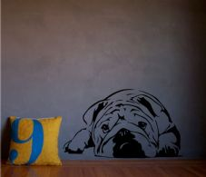 Sleepy Bulldog Wall Art